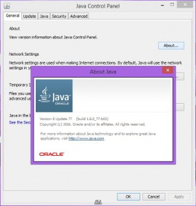 Java SE Runtime Environment 8.0 Update 77 [En]