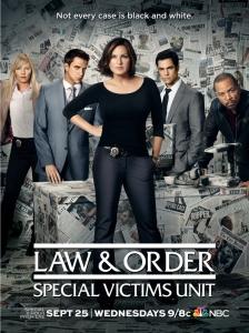 Закон и порядок: Специальный корпус (12 сезон: 1-24 серии из 24)   СТС