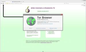 Tor Browser Bundle 6.0.3 Final [Ru]