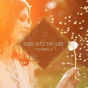 VA - Deep into the Vibe Vol.6