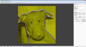 Picture Cutout Guide 3.2.10 Portable by Sitego [Multi/Ru]