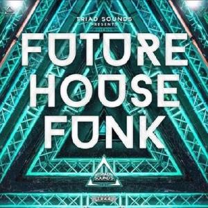 VA - Future House Reality Funk