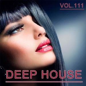 VA - Deep House Collection Vol.111