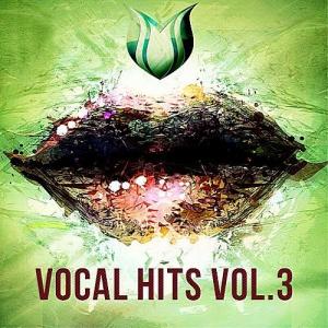 VA - Vocal Hits Vol.3