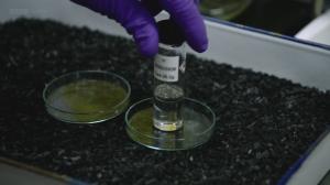 BBC: Тайная наука. Химическое и биологическое оружие