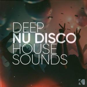 VA - Deep Nu Disco House Sounds
