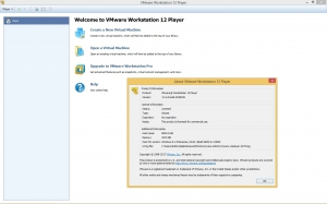VMware Workstation Player 12.5.6 Build 5528349 Commercial [En]