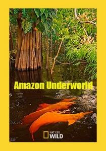 NG: Скрытый мир Амазонки