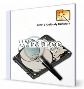 WizTree 3.39 + Portable [Multi/Ru]