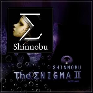 Shinnobu - 2 альбома