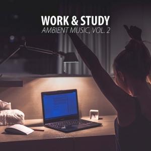 VA - Work & Study Ambient Music Vol. 2