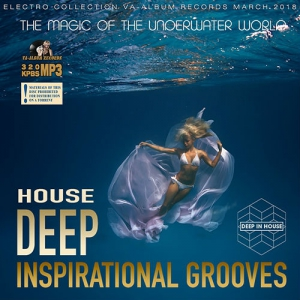VA - Deep Inspirational Grooves