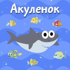 Коте ТВ - Акуленок