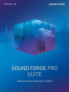 MAGIX Sound Forge Pro Suite 13.0 Build 124 [Ru/En]