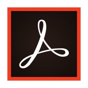 Adobe Acrobat Pro DC 2019.012.20040 [Multi/Ru]