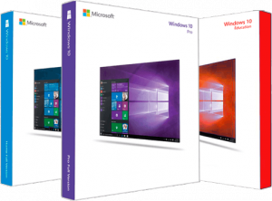 Microsoft Windows 10.0.17763.316 Version 1809 ( February 2019 Update) - Оригинальные образы от Microsoft MSDN [Ru]