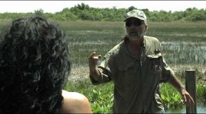Резня в бикини на болоте