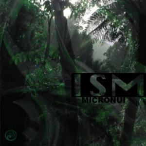 Ism - Micronui