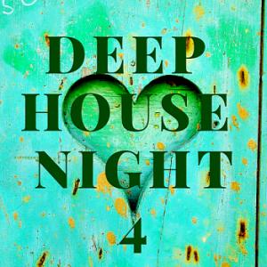 VA - Deep House Night 4