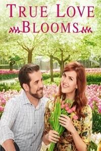 Когда расцветает любовь