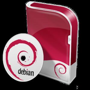 Debian GNU/Linux 10 buster 10.0 [amd64] 2xDLBD