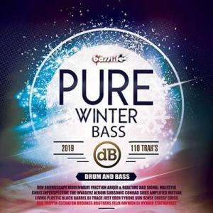VA - Pure Winter Bass