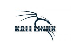 Kali Linux 2019.4 (ex. BackTrack) [Аудит безопасности, хакинг] [amd64, i386] 8xDVD