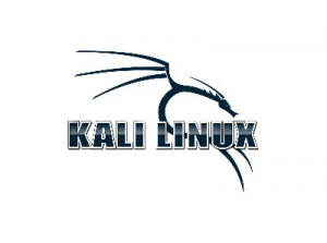 Kali Linux 2020.1a (ex. BackTrack) [Аудит безопасности, хакинг] [amd64, i386] 2xDVD