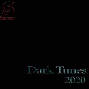 VA - Dark Tunes 2020