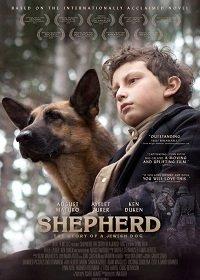 Овчарка-герой