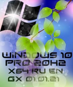 Windows 10 PRO 20H2 x64 19042.685 [GX 01.01.21] [Ru/En]