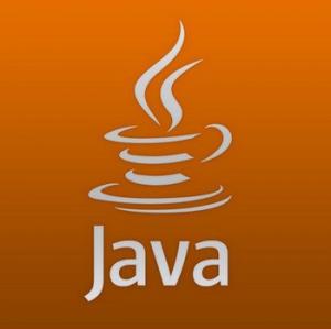 Java SE Runtime Environment 8.0.2810.9 [En]