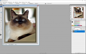 Adobe Photoshop CS3 10.0 Portable [Ru]