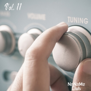VA - Сегодня на радио хиты FM Vol.11