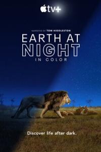 Земля ночью в цвете