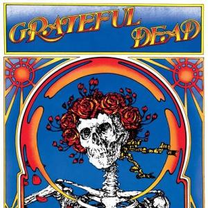 Grateful Dead - Grateful Dead Skull And Roses