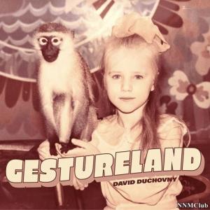 David Duchovny - Gestureland